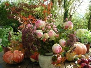 Le jardin en novembre : ce qu'il faut faire ce mois ci !