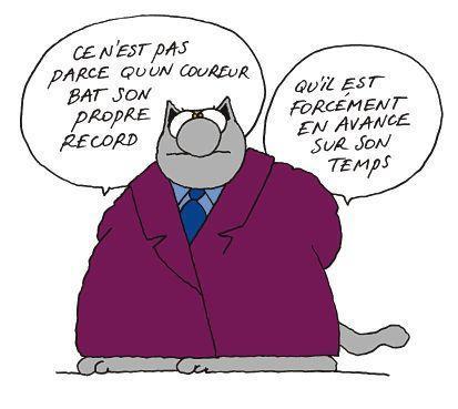 chatcoureur1