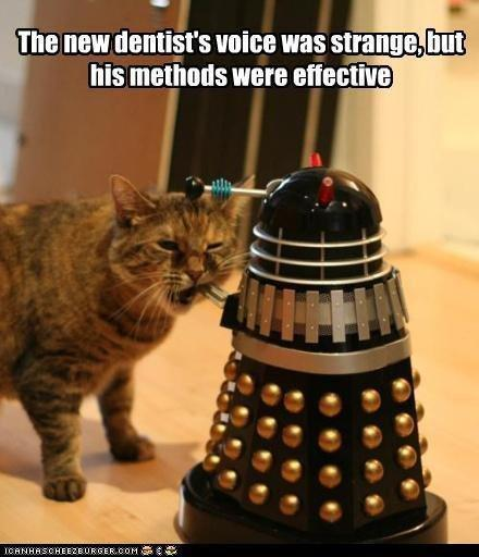 funny-pictures-exterminate-all-the-plaque