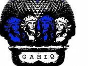 Retour GAMIQ 2013