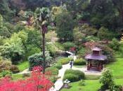 Powerscourt garden jardin l'Irlande
