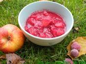 Compote maison pommes framboises