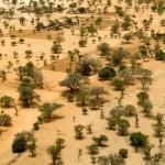 Sahel-terrorisme