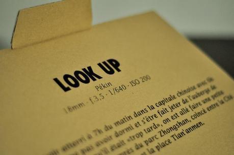 Shutter-look-up-23