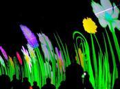 Fête Lumières/Light Festival (Lyon 2013)