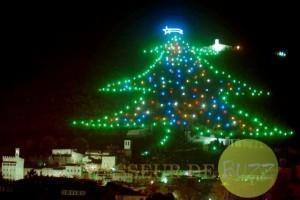 arbre noel