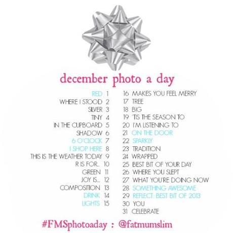 DECEMBER-PHOTO-A-DAY-copie-1.jpg