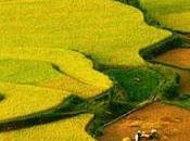 plus beaux célèbres sites Vietnam