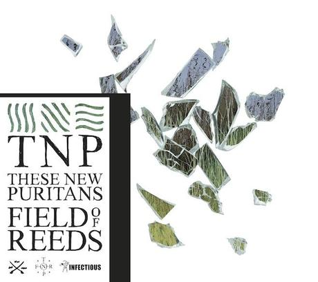 these new puritans field of reeds Les 25 meilleurs albums de 2013