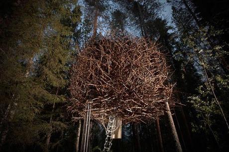 prenez-de-la-hauteur-avec-ses-somptueuses-maisons-perchees-dans-les-arbres24