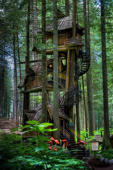 prenez-de-la-hauteur-avec-ses-somptueuses-maisons-perchees-dans-les-arbres30