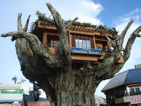 prenez-de-la-hauteur-avec-ses-somptueuses-maisons-perchees-dans-les-arbres17