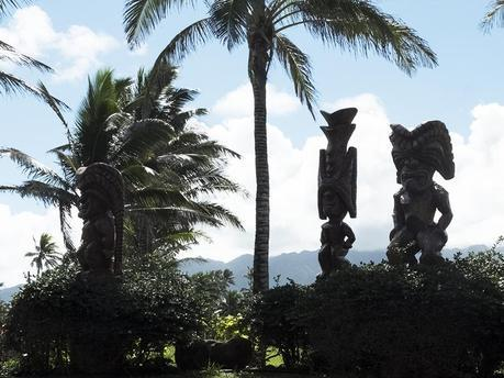 Hawaii #5 - 06
