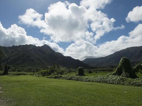 Hawaii #5 - 05