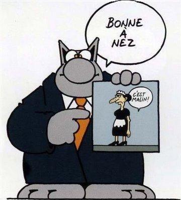 chat geluck bonne annee