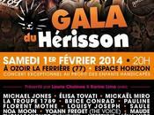 Gala l'association Hérisson Concert exceptionnel avec stars chansons profit enfants handicapés