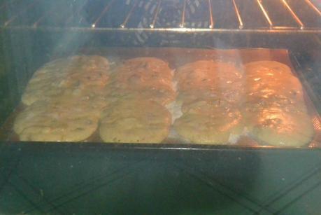 biscottis pistaches abricots 006
