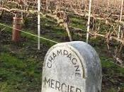 Visite cave Mercier Epernay