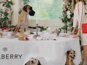 Cara Delevingne ménagerie pour Mulberry