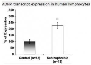 SCHIZOPHRÉNIE: Relancer l'autophagie cérébrale pour nettoyer le cerveau – Molecular Psychiatry
