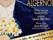 """manquer Reprise """"Des Fleurs pour Algernon"""", partir février 2014 Théâtre Hébertot"""