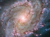 Hubble signe superbe portrait galaxie