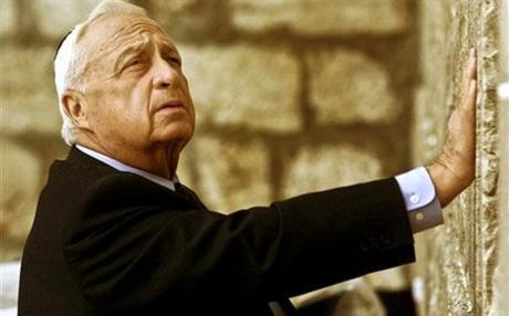 Ariel Scheinermann (1928-2014)