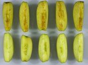 Biotechnologie veut manger pomme