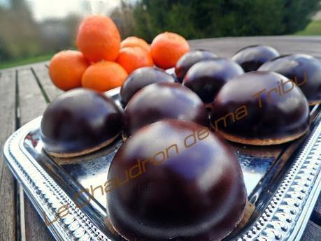 mousse de mandarine en coque de chocolat 014