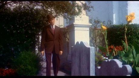 vertigo-Fleur9-cimetière