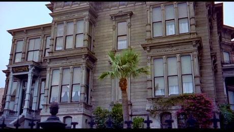 vertigo-Fleur11-palmier central
