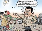 #roms France traiterait mieux chiens