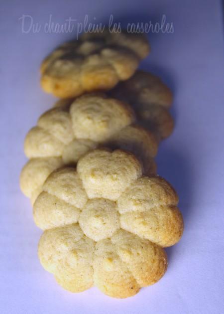 Biscuits citron épices