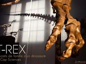 Reportage Photo T-REX Secret famille d'un dinosaure... Sciences
