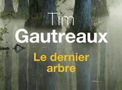 dernier arbre Gautreaux