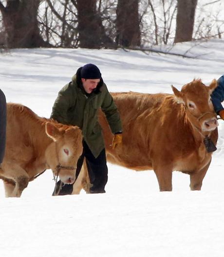 Robert Pattinson prêt pour le salon de l'agriculture