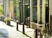 Amsterdam gourmand