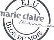 Blogs créatifs 2014 Votez Sève Déco