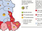 INSEE Zoom filière bois Auvergne