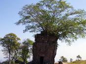 L'interdit Preah Vihear