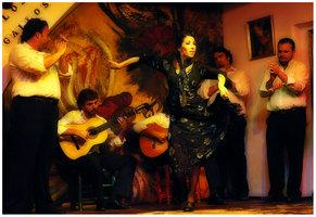Flamenco-II by sedats