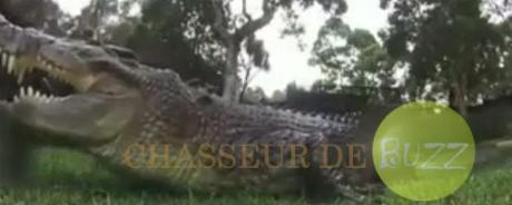 camera_crocodile