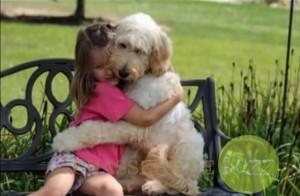 chien et famille1