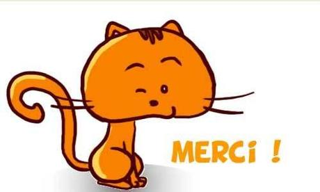 Chat merci 2