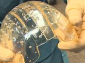 géant grâce l'implantation d'un crâne réalisé l'impression