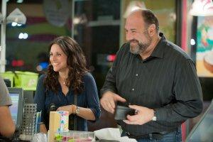 All-about-Albert-Photo-James-Gandolfini-Julia-Louis-Dreyfus-01