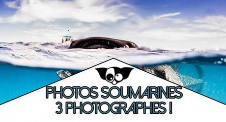 Photos sous marine : 3 photographes