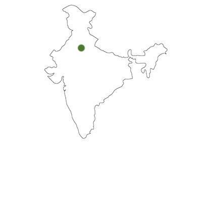carte delhi inde DELHI   5 CONSEILS POUR VISITER LA CAPITALE