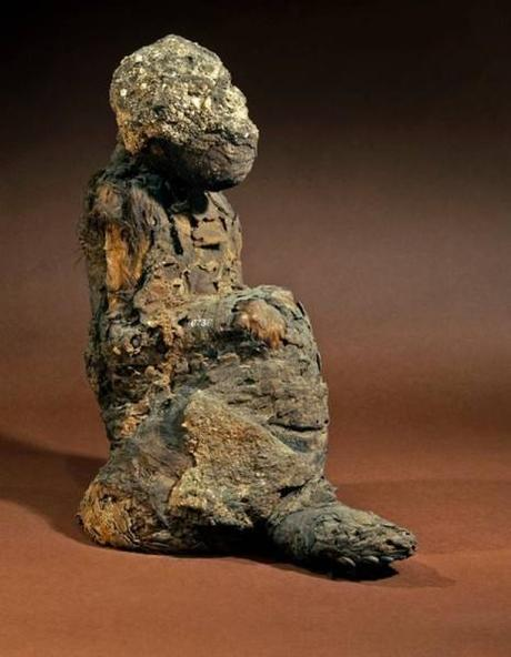 baboon-mummy-original-size.jpeg