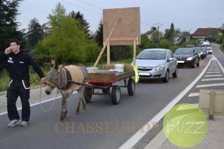 sans-permis-âne-charrette-bouchon-jura-buzz